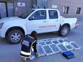 Sequestrati al mercatino di Crotone centotrenta chilogrammi di novellame dalla Capitaneria di Porto: sanzioni per 10mila euro