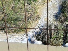 Schiuma bianca sospetta immortalata questa mattina sulle acque del fiume Esaro in coincidenza del ponte di viale Gandhi a Crotone